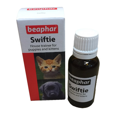 Swiftie House Trainer for Puppies and Kittens